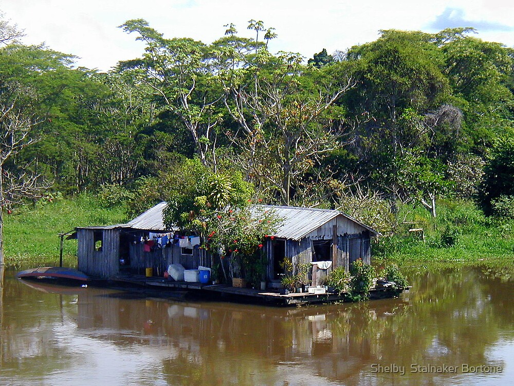 A Home on the Amazon by Shelby  Stalnaker Bortone