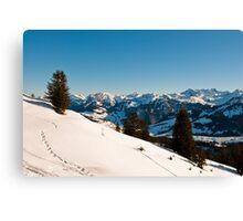 winter scenics Canvas Print