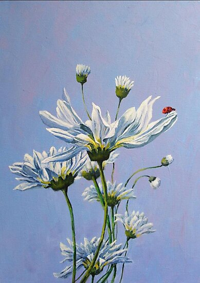 'High on Daisy' by Helen Miles
