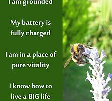 Healing Affirmations by Katherine T Owen, Author
