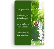 Healing Affirmations Canvas Print