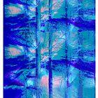 What is Soul?  by Corri Gryting Gutzman