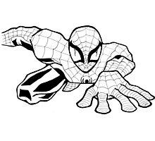 Spider Man Photographic Print