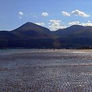 The Mournes by Alan McMorris