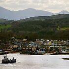 Strangford, County Down by Alan McMorris