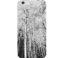 Flagstaff, Az - Aspen View  iPhone Case/Skin