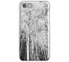 Flagstaff, Az - Aspen View  iPhone Case/Skin
