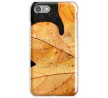 Sedona, Az - Fall leaf iPhone Case/Skin