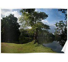 Lake Scene - Angkor Wat Poster