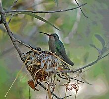 Momma Hummer Standing Gaurd  by Judy Grant