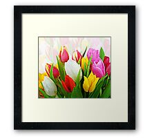 Colorful Tulips Pixelate Framed Print