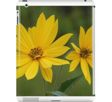 Like Rays Of Sunshine iPad Case/Skin