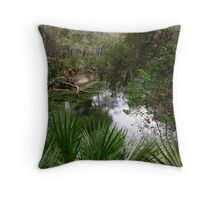 beautiful blue springs Throw Pillow