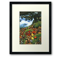 MIDDLE PRONG,AUTUMN Framed Print