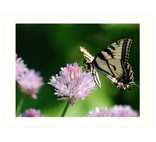Second Nature Butterfly Art Art Print