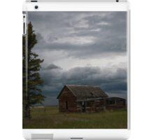 Montana Field iPad Case/Skin