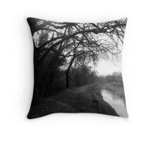 Redding Canal Throw Pillow