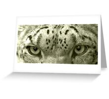 Snow Leopard Eyes Greeting Card