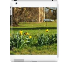 The Daffodils are out iPad Case/Skin