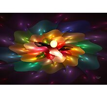 'Light Flame Abstract 251' Photographic Print