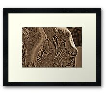 Safari Framed Print
