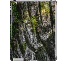 SURFACE [iPad cases/skins] iPad Case/Skin
