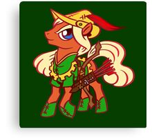 Robin Hood Pony Canvas Print