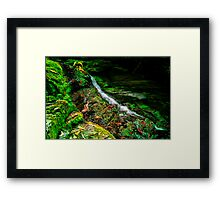 """Just a Trickle"" Framed Print"