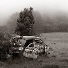 another angle, rusty wreck by ozzzywoman