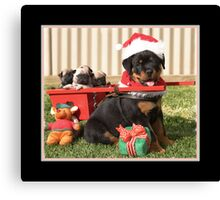 Puppy for Christmas Canvas Print