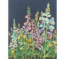 Nina's Garden                  Photographic Print