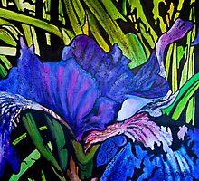 Iris by Susan Duffey