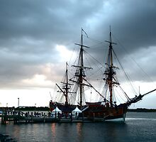 Bark Endeavour by wildplaces