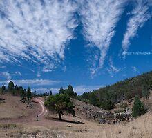 Nangar National Park by garts