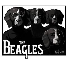 The Beagles by GingyBeans