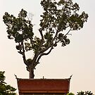 Around Chedi Luang temple by Cvail73