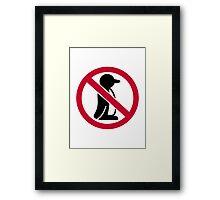 No penguin Framed Print