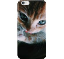 Blue Eyed Kitty iPhone Case/Skin
