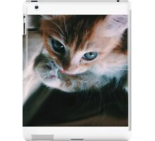 Blue Eyed Kitty iPad Case/Skin