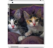 Kittens in a Purple Bed iPad Case/Skin