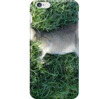 Sleeping Wallaby iPhone Case/Skin