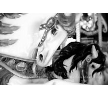 Horse Play Photographic Print