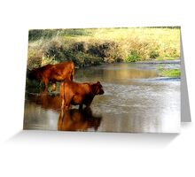 """Fall Colors """"Cleaning Up"""" Greeting Card"""