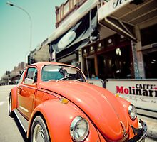 Old beetle by manlio