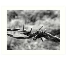 winter barbed wire Art Print