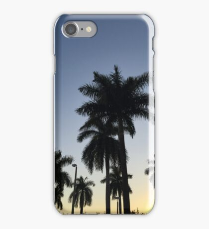 Palm Trees, Ft. Lauderdale iPhone Case/Skin