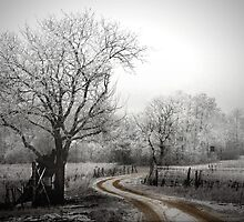 the long and winding road (on a chilly day) by Dan Shalloe