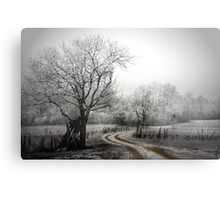 the long and winding road (on a chilly day) Metal Print