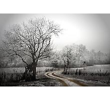 the long and winding road (on a chilly day) Photographic Print