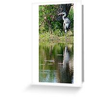 posing crane Greeting Card